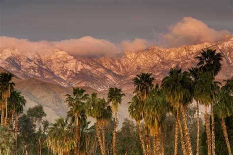 Palm Springs Gay Guide and Events 2016-2017