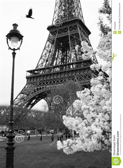 Eiffel Tower With Spring Park, Paris, France Royalty Free