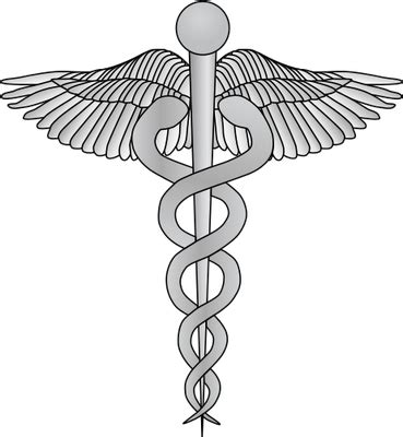Medical caduceus - Other - Vector Illustration/Drawing