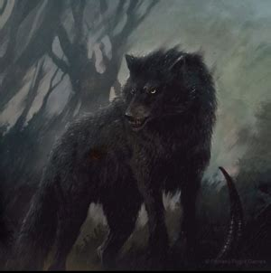 Direwolf - A Wiki of Ice and Fire