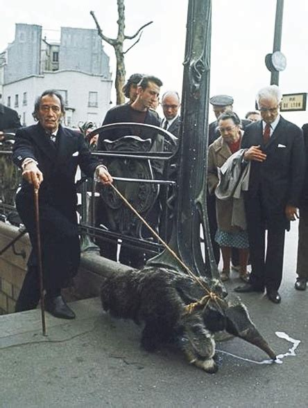Salvador Dalí taking his anteater for a walk in Paris